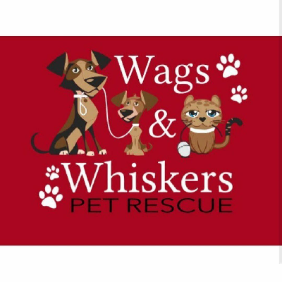 Willows Wags And Whiskers' Photo