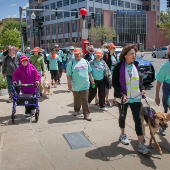 The Walk to End Elder Isolation Photo