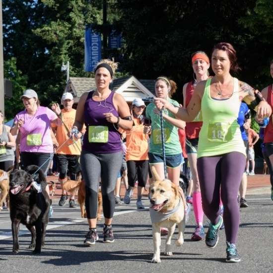 Walk/Run for the Animals 2018 Photo