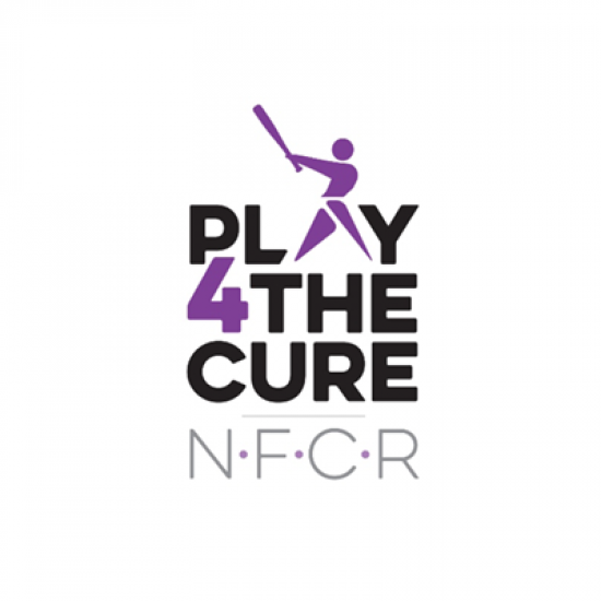 Play4TheCure Summer Series 2018 Photo
