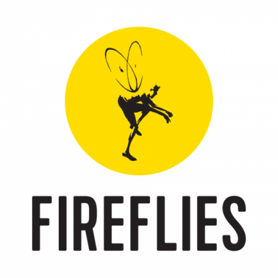 Fireflies Cycling – Niagara Falls to NYC Photo
