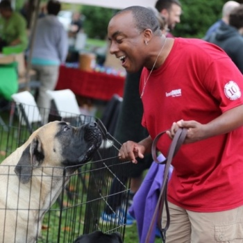 National Dog Show Charity Walk 2018