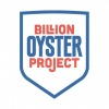 billionoysterproject's profile image - click for profile